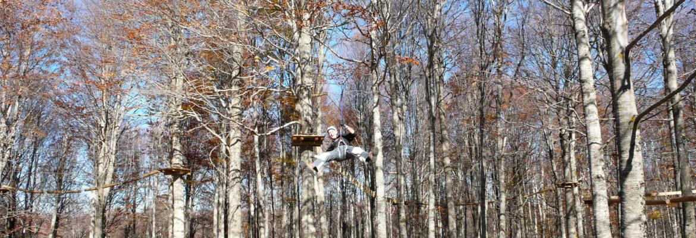 Massimiliano capalbo bosco